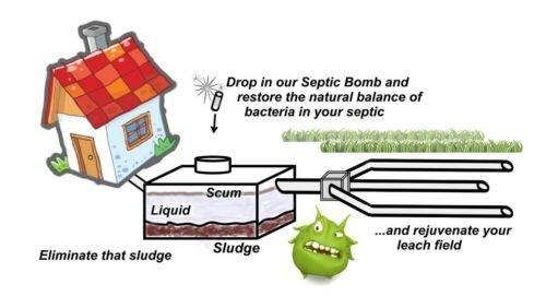 Amazon.com: 3 – séptico bombas – Tanque Séptico & leachfield ...