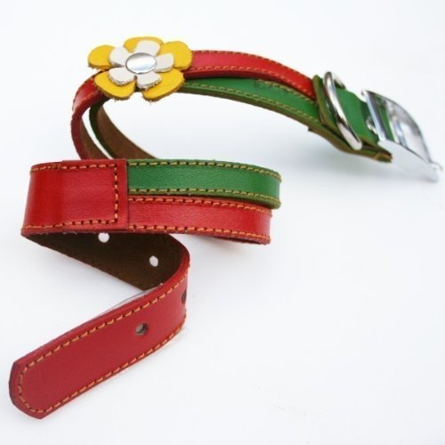 The Cool Puppy Swirls- Rasta Leather Dog Collar - Red Green and Yellow Flowers Small (8-10 inches)