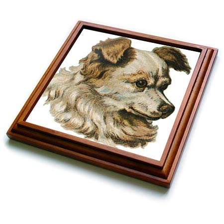 3dRose Cassie Peters Dogs - Vintage Toy Dog Terrier Type - 8x8 Trivet with 6x6 ceramic tile (trv_307002_1)