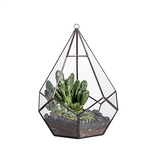 Modern Indoor Opening Wall Hanging Glass Geometric Terrarium Polyhedron Diamond Teardrop Shape Pot Tabletop Window Sill Balcony Decorative Planter Succulent Air Plant Holder Vase Centerpiece 8.6