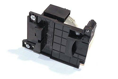 P Premium Power Products DT01025-ER Compatible Projector Lamp Accessory by P Premium Power Products (Image #3)