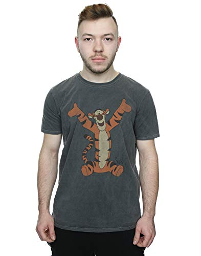 Disney Men's Winnie The Pooh Classic Tigger Washed T-Shirt Charcoal Large
