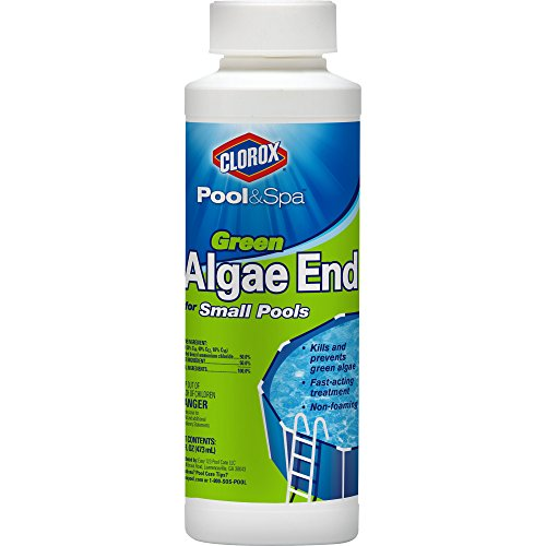 What is the best swimming pool algae control out there on the market 2017 review product Swimming pool algae treatment