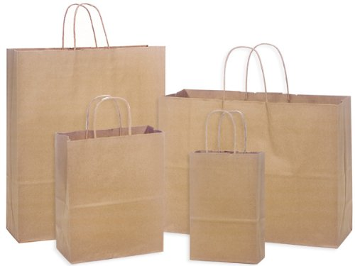 Pack Of 125, Assortment 100% Recycled Brown Paper Bags 25 Rose (5-1/2