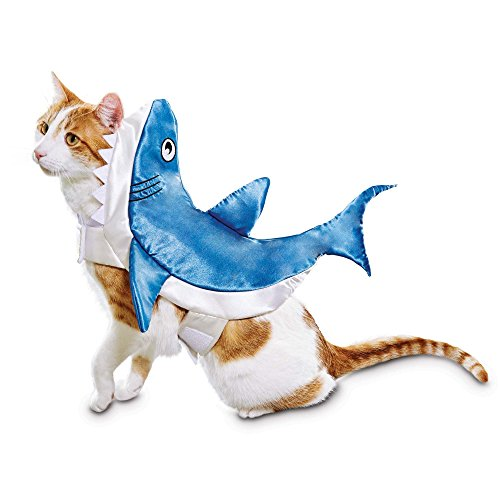 Cat Shark Fin Costume (Bootique Shark Pet Costume, Small, Blue)