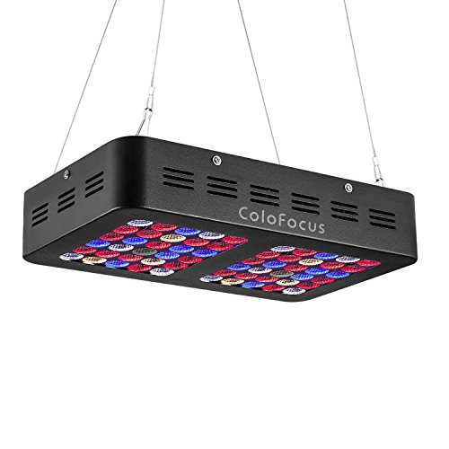 ColoFocus 600W LED Grow Lights for Indoor Plants, Full Spectrum with IR UV for Hydroponic Indoor Plants Veg and Flowers with VEG and Bloom Switch, Daisy Chain Feature for Connection by ColoFocus