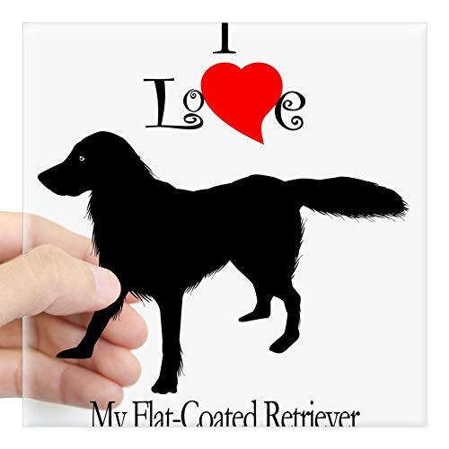 CafePress Flat Coated Retriever Rectangle Sticker Square Bumper Sticker Car Decal, 3