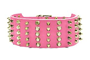 """Dean and Tyler """"WIDE HEAVEN"""" Dog Collar With Solid Brass Hardware And Buckle - Pink - Size 40"""" by 2 3/4"""" Width - Fits Neck Size 38-Inches to 42-Inches."""