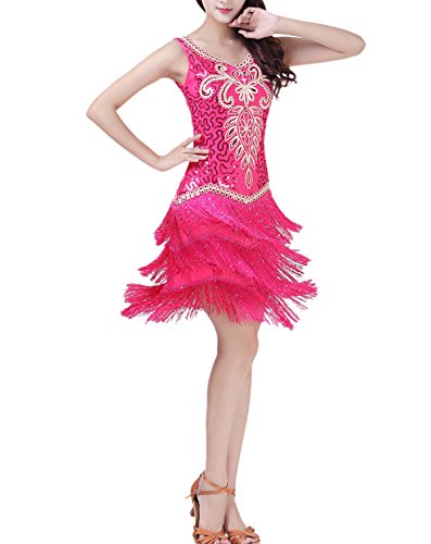 Womens Modern Embroidery Salsa Fringe Dance Outfits Costumes Attires Clothing ()