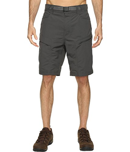 the-north-face-paramount-trail-shorts-asphalt-grey-mens-shorts