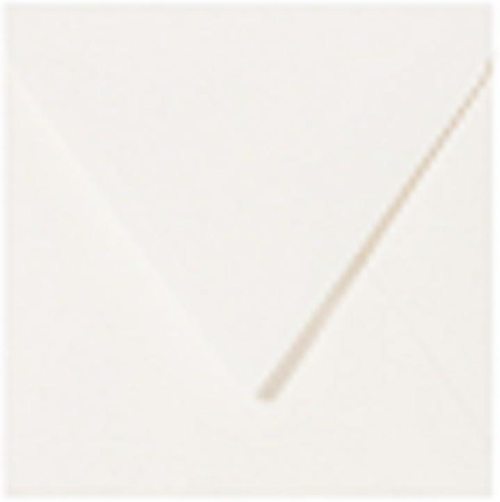 16 x 16 cm Paper24-50 buste quadrate 160 x 160 mm colore: Trasparente//Bianco