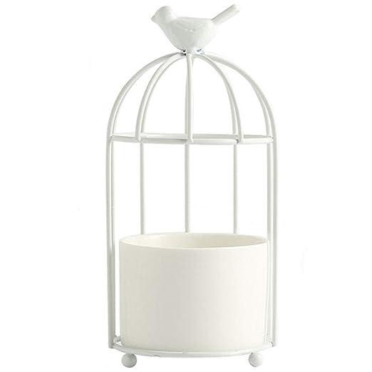 MOCOHANA Jaula para pájaros con marco de hierro, jarrón para ...