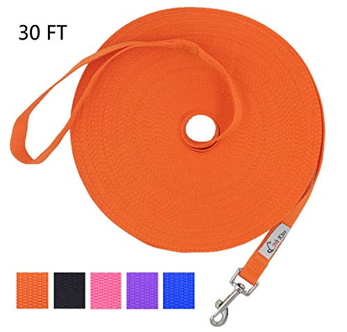 Hi Kiss Dog/Puppy Obedience Recall Training Agility Lead - 15ft 20ft 30ft 50ft 100ft Training Leash - Great for Training, Play, Camping, or Backyard - Orange 30ft