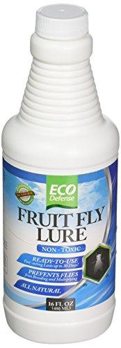 Eco Defense Fruit Fly