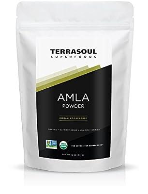 Terrasoul Superfoods Amla (Amalaki) Berry Powder (Organic)