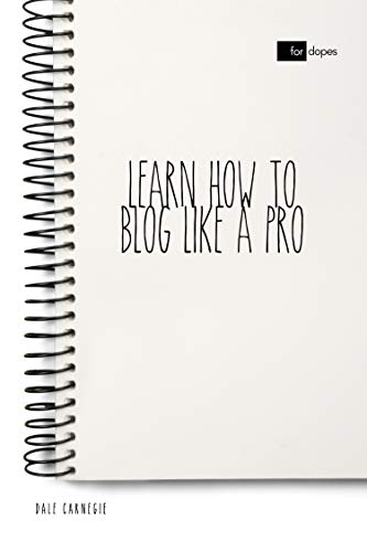 Learn How to Blog Like a Pro (Best Law Of Attraction Blogs)