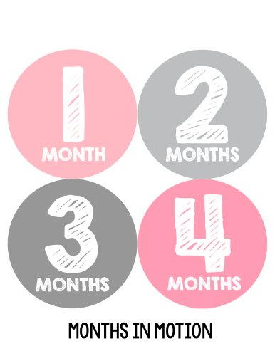 Months in Motion 106 Monthly Baby Stickers Baby Girl Milestone Photo (Pink Photo Birth Announcement)