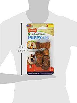 Nylabone Healthy Edibles Mini Turkey and Sweet Potato Flavored Puppy Dog Treat Bones, 5 Count