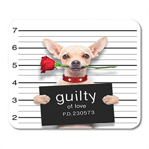 Emvency Mouse Pads Bad Valentines Chihuahua Dog Rose in Mouth As Mugshot Guilty for Love Arrest Mousepad 9.5