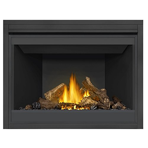 Napoleon Ascent B46NTR Direct Vent Natural Gas Burning Fireplace Millivolt Standing Pilot (46) reviews