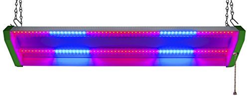 Best Led Grow Light For Budding in US - 6