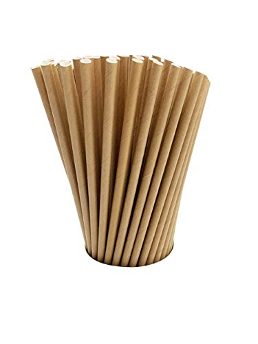 Paper Drinking Straws (100 Kraft Biodegradable Paper Straws co-Friendly Biodegradable Drinking Straws Bulk for Party Supplies, Bridal/Baby Shower, Birthday, Mixed Drinks, Weddings, Restaurant, Food Service, Drink)