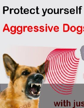 Dazer Ii Ultrasonic Aggressive Dog Deterrent Repeller