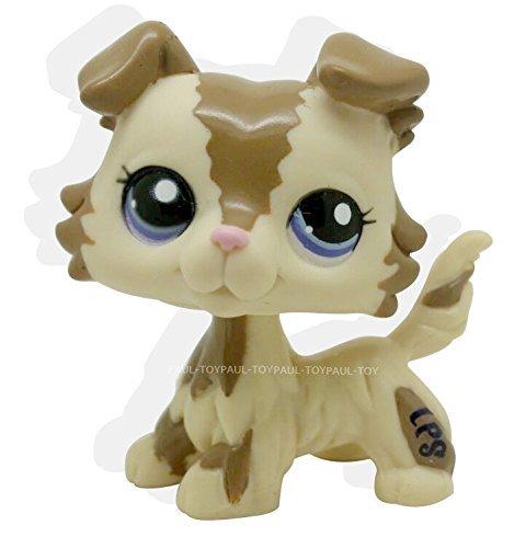 [RARE Littlest Pet Shop Brown Collie Dog Puppy Blue Eyes Figure Puggy LPS #2210] (Kitten Bear Costume)