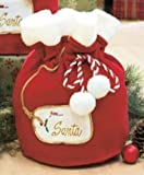 Santa's Christmas Gift Bag - Fabric - About 12 by 8.5 inches