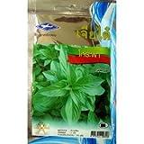Sweet Basil 750 Seeds 3 Pack Chai Tai Thai
