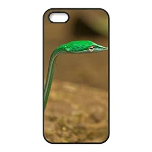 Snake Use Your Own Image Phone Case for Iphone 5,5S,customized case cover ygtg533192