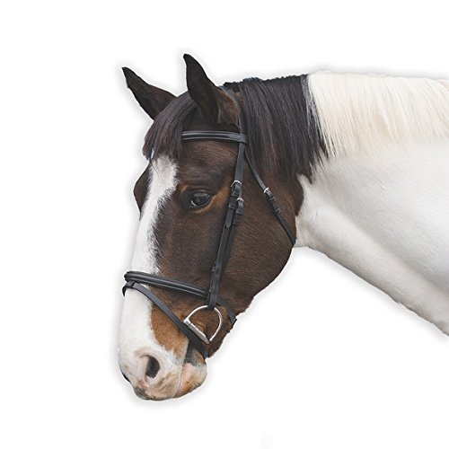 Flash Noseband Bridle - 8