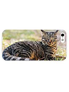 3d Full Wrap Case for iPhone 5/5s Animal Cat In The Grass94