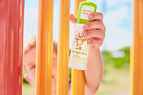 Babyganics Alcohol-Free Foaming Hand Sanitizer, Fragrance Free, On-The-Go, 50 ml (1.69-Ounce), Pump Bottle (Pack of 6) by Babyganics (Image #7)