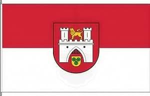 Bandera de la bandera de Hannover–80x 120cm