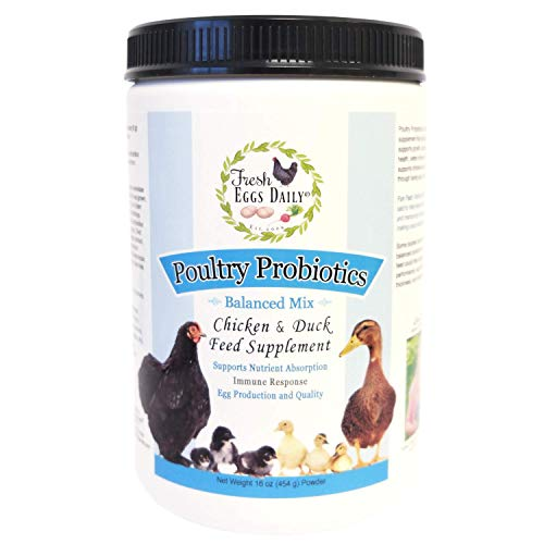 Daily Feed - Fresh Eggs Daily Poultry Probiotics Chicken and Duck Feed Supplement 1LB