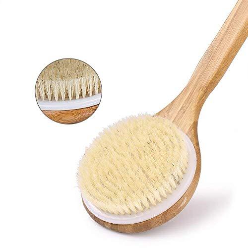 Buy shower back brush medium