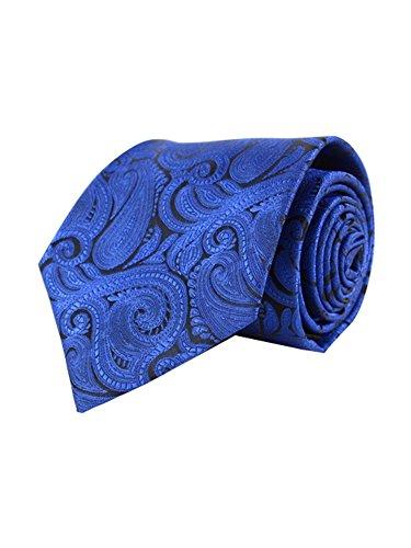 Men's Royal Blue Paisley 100% Microfiber Poly Woven Wedding Neck Tie