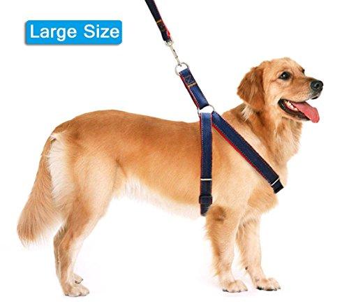 Lifepul Dog Leash Harness Collar product image