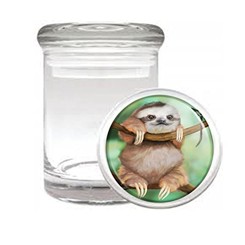 """Medical Glass Stash Jar Sloth Cute Furry Animal S2 Air Tight Lid 3"""" x 2"""" Small Storage Herbs & Spices"""