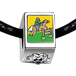 Chicforest Silver Plated Olympics male player Equestrian practice Photo Purple Amethyst Crystal February Birthstone Flower Charm Beads Fits Pandora Charm