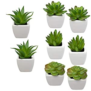 Set Of 8 Small Green Succulent Artificial House Plants Ceramic Pots Home Office 66