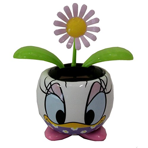 Panda Expressions Solar Dancing Flower in Daisy Duck for sale  Delivered anywhere in USA