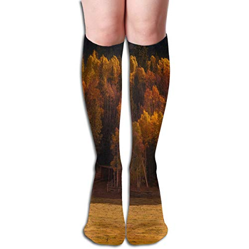 Women Socks Mid-Calf Nature Autumn Valley Forest Horse Winter Cool For Halloween -
