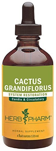 Cactus Grandiflorus Extract (Herb Pharm Cactus Grandiflorus Extract for Cardiovascular Circulatory Support - 4 Ounce by Herb Pharm)