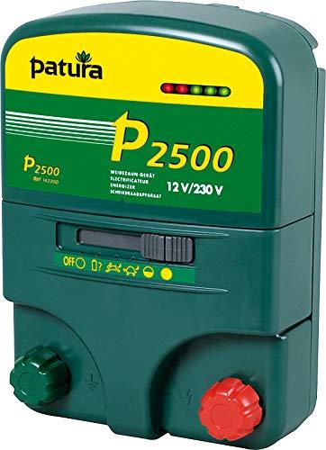 Patura P2500, Multi-Functional device, 230 V   12V