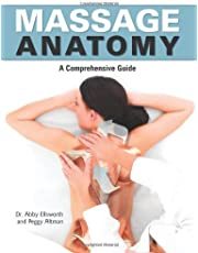 Massage Anatomy: A Comprehensive Guide