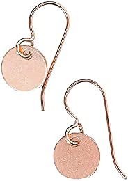 Small 14K Rose Gold Fill Round Circle Disc dangle drop Earrings