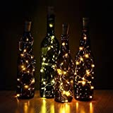 LED string lights 2Pcs