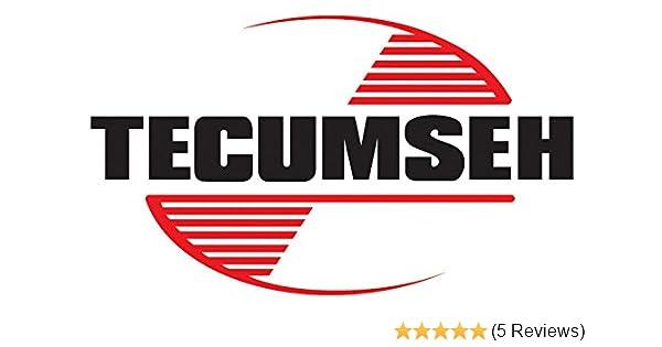 Tecumseh 37855 Fuel Tank